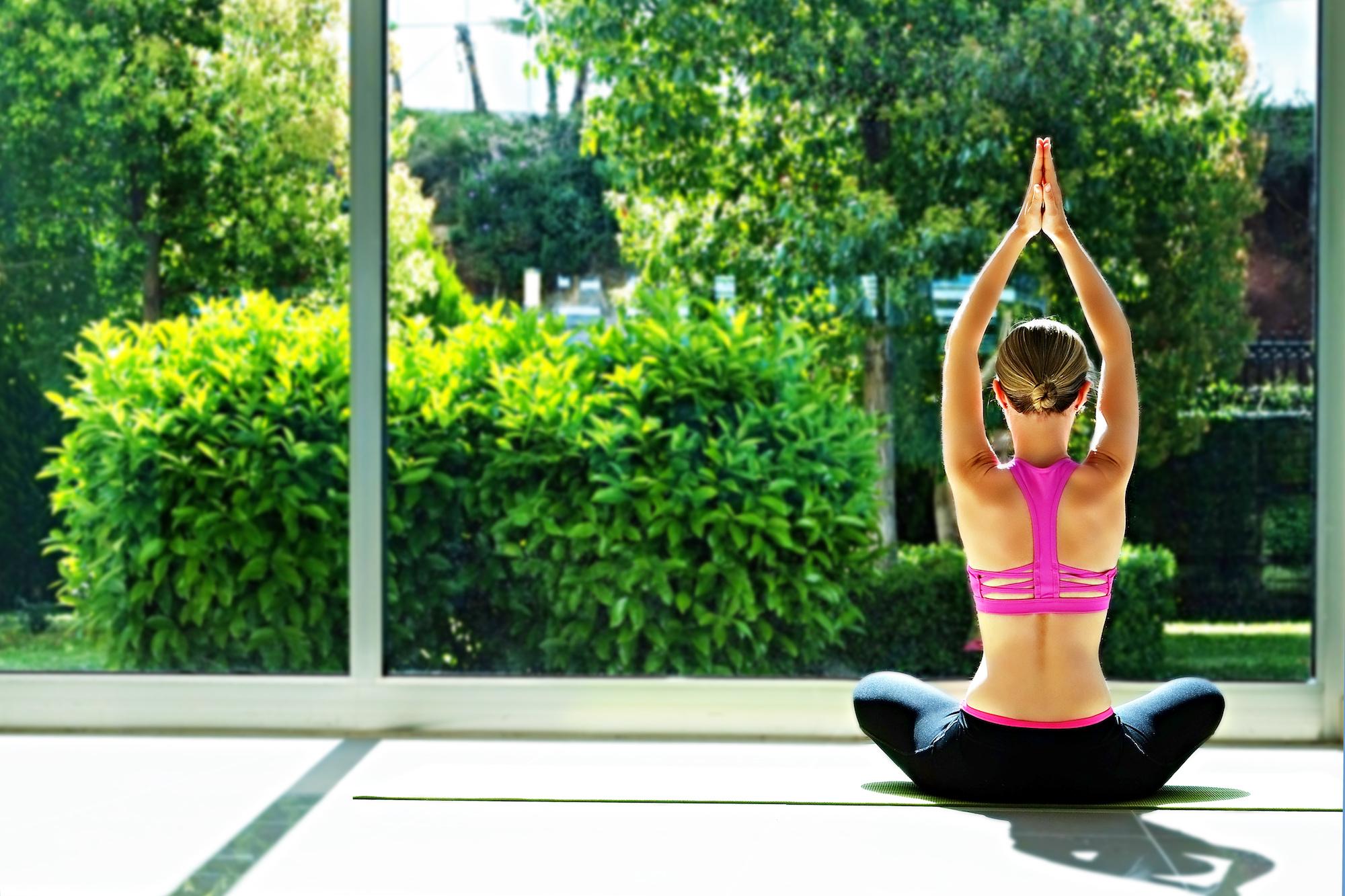 Garden room gyms and health studios